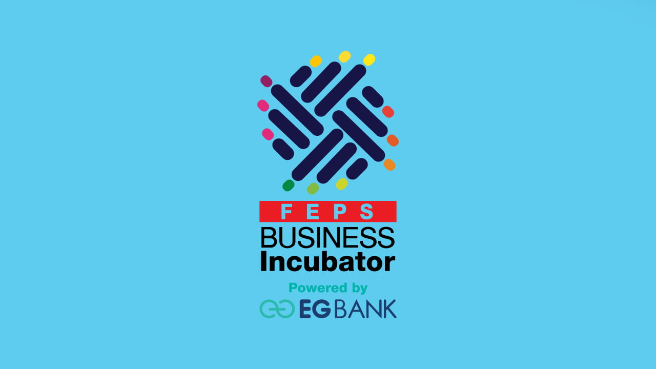 FEPS Business Incubator 1st Cycle